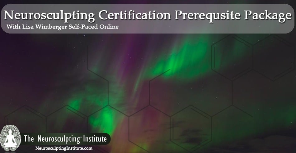 Neurosculpting Certification Prerequsite Package With Founder Lisa Wimberger ONLINE