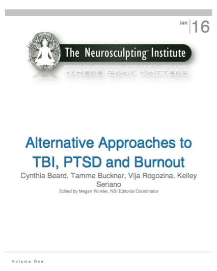 2016 Neurosculpting® Annual Journal – PTSD, TBI And Athletic Burnout