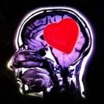 Inteligencia Emocional para Ejecutivos y Emprendedores en Audio