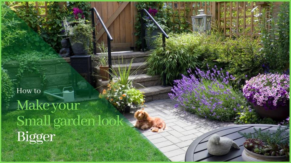 13 Easy Tricks To Make Your Small Garden Look Bigger Nb