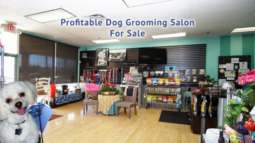 Dog Grooming Salon for Sale in Nevada