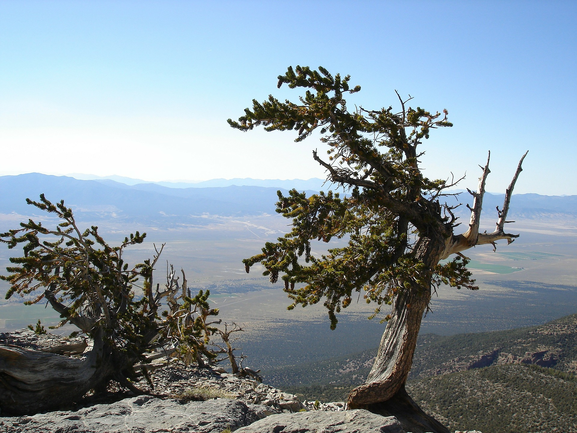 Great Basin National Park overlooking Baker Nevada