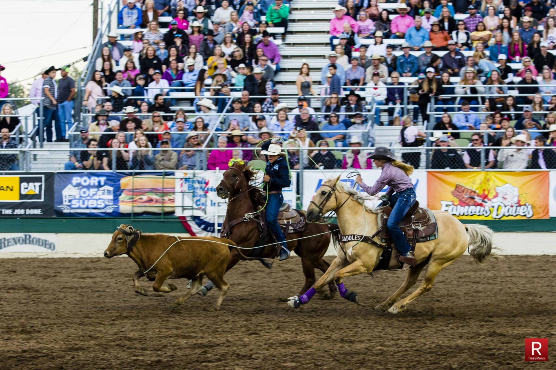 The 2019 Reno Rodeo. Image: Ty O'Neil