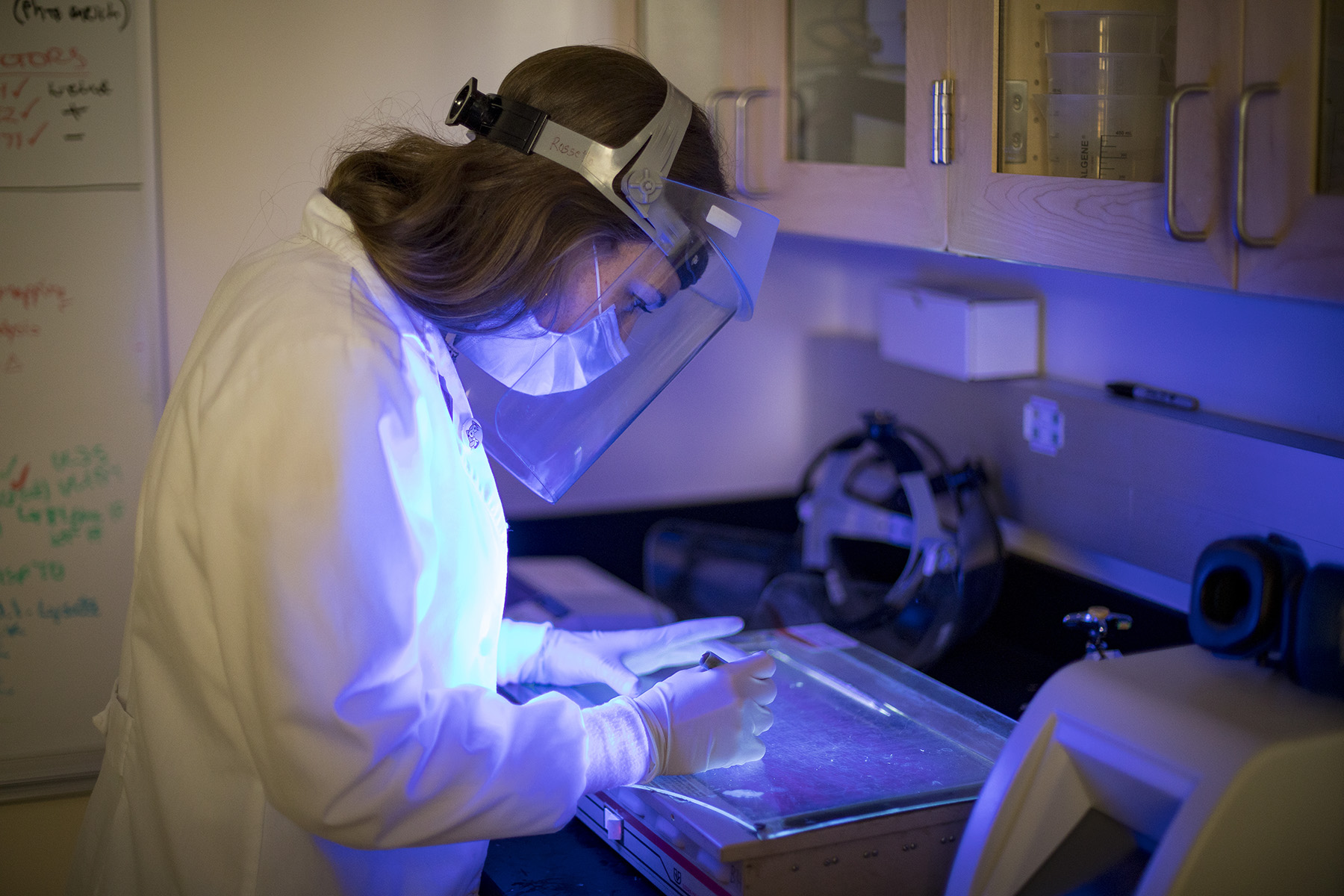 Graduate student Salome Manska analyzes human cells under fluorescent microscope in the Verma Rossetto Lab at the University of Nevada, Reno School of Medicine.