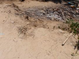 Roadside trash in trees Zihuatanejo