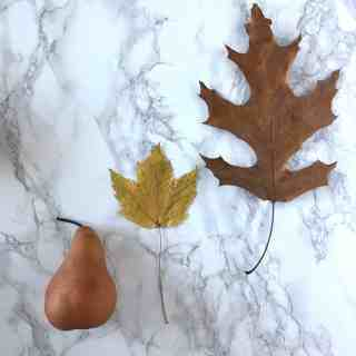 pear and fall leaves
