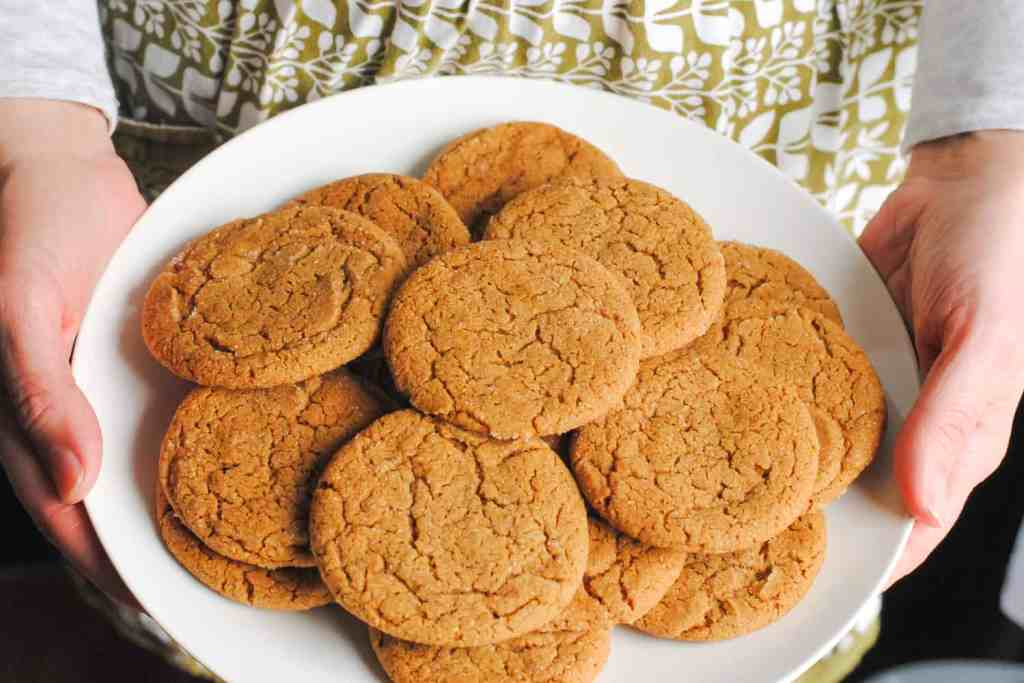 hands holding a plate of ginger cookies