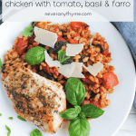 Plate of cooked chicken and farro with tomatoes garnished with fresh basil and shaved parmesan cheese