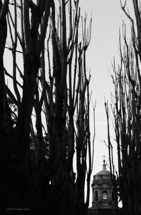 Cimitero Monumentale - Milano (13)