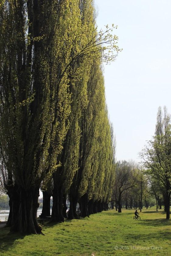 Near the lake - Mantova, Italy