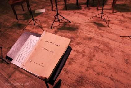 Teatro Bibiena 3 (Mantova, Italy) - 2014 © Thatiana Terra