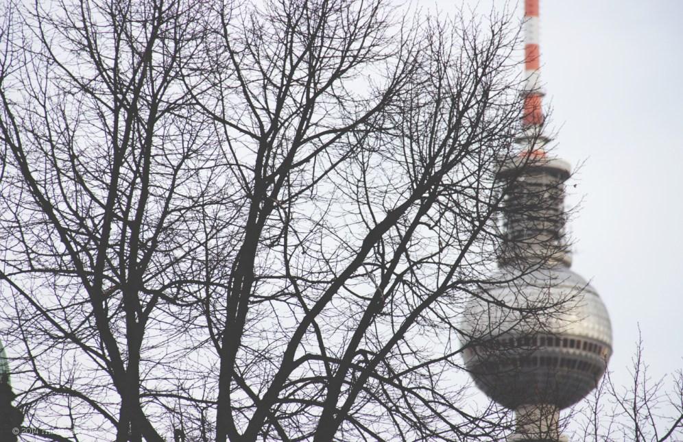 Berlin: Behind trees and leaves (4)