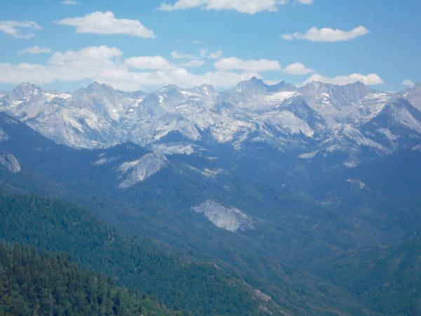 Sequoia National Park Travel Tips at NeverEndingJourneys.com