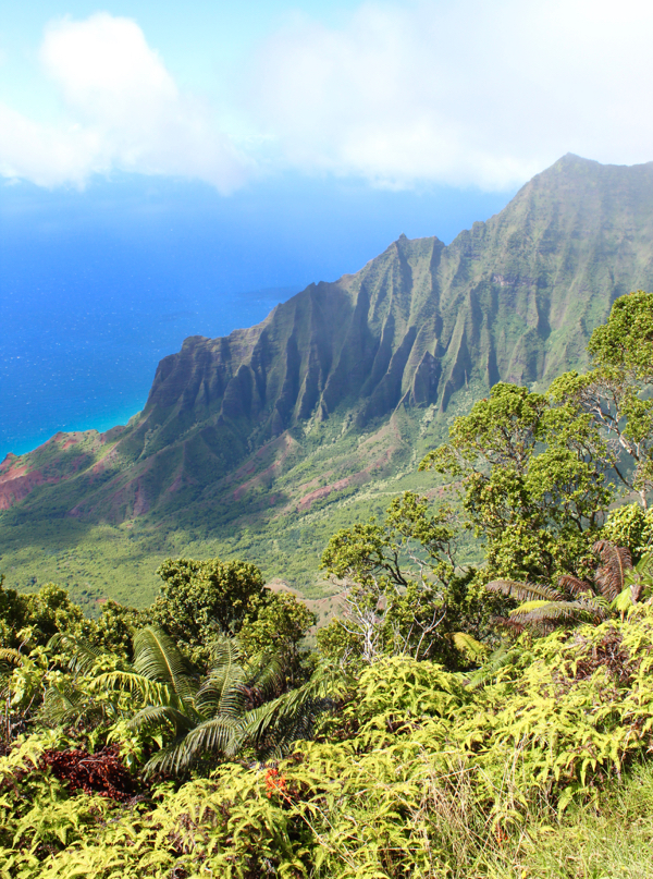 Kauai Budget Travel Guide Koke'e State Park