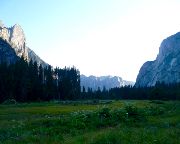 Yosemite National Park Travel Guide Things to do
