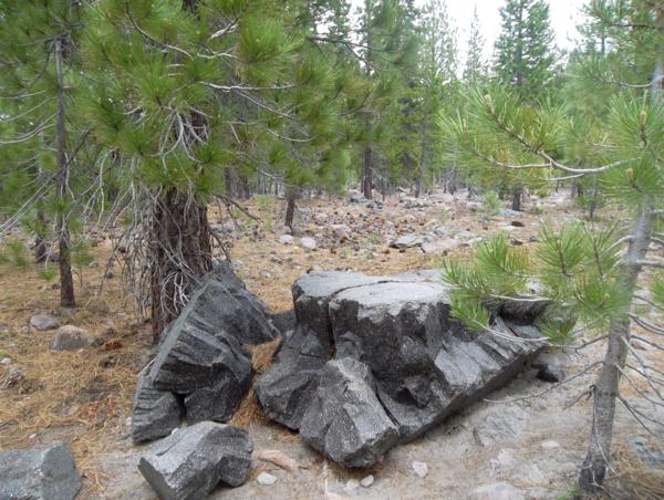 Lassen Volcanic National Travel Guide Devastated Area