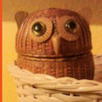 Wise Old Owl woven basket