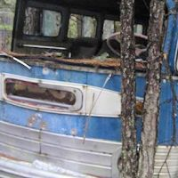 Old bus abandoned in woods