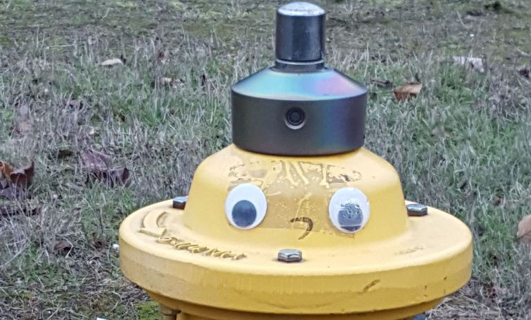 Whimsical fire hydrant with googly eyes