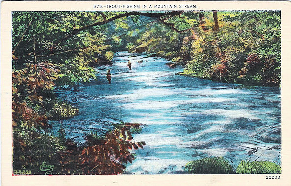 Postcard; trout fishing in a mountain stream.