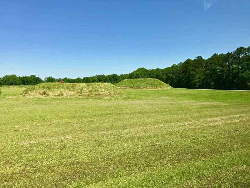Moundville - looking across the mounds | Nevertooldtotravel.com | Gary House