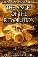 The Angel of the Revolution cover
