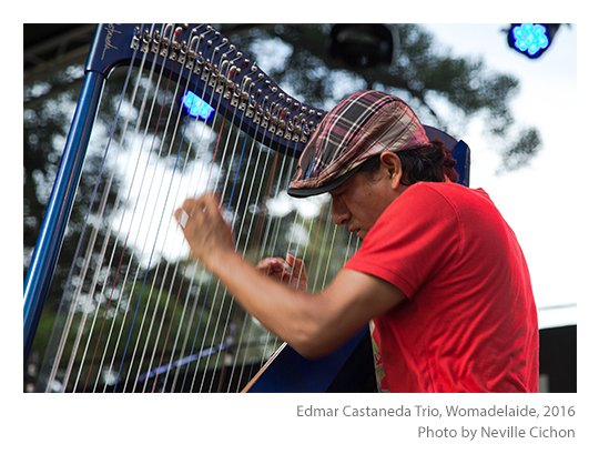 Edmar-Castaneda-Trio-Womadelaide-photo-Neville-Cichon-04