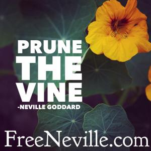 prune_the_vine_neville_goddard