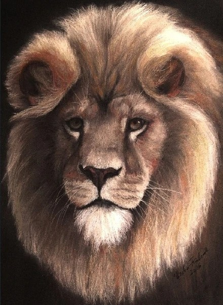 True King