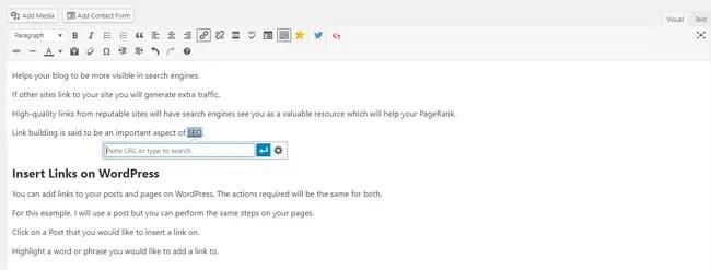 Insert Links on WordPress Blog Posts