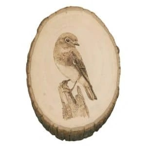 bluebird wood burning - Nevue Fine Art Marketing