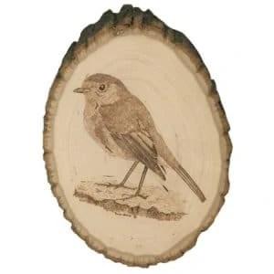 Robin Bird Wood Burning