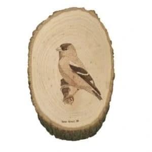 american goldfinch wood burning