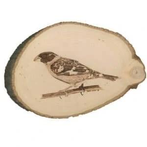 Oriole Maryland State Bird Wood BurningOn Basswood