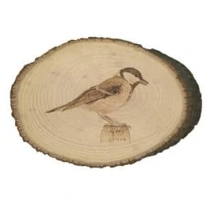 Nature's Choir Great Tit Songbird Wood Burning by Dave Nevue on Country Basswood Created 2018