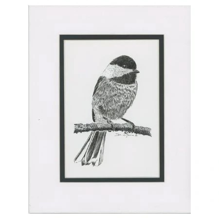 Original Taking A Break Black-Capped Chickadee Pen and Ink Drawing