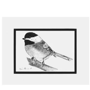 Original Taking A Break Black-Capped Chickadee Pen and Ink Drawing Drawing Size 5 x 7 Drawing surface Strathmore Bristol Smooth Surface. Comes with a matte that will fit an 8 x 10 frame. The black-capped chickadee