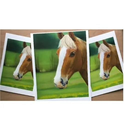 Limited Edition Giclee Prints - Fine Art Prints What Is The Difference