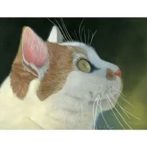 Cat Portrait Pastel Painting Fine Art