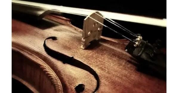 draw a violin