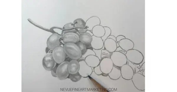 How To Draw Grapes Nevue Fine Art Marketing