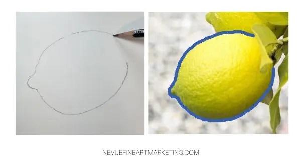 lemon sketch