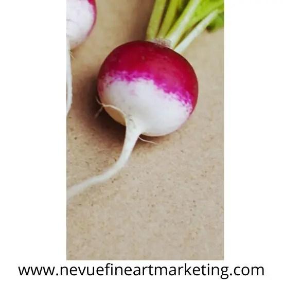 how to draw a radish