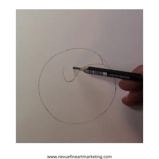 draw apricot stem