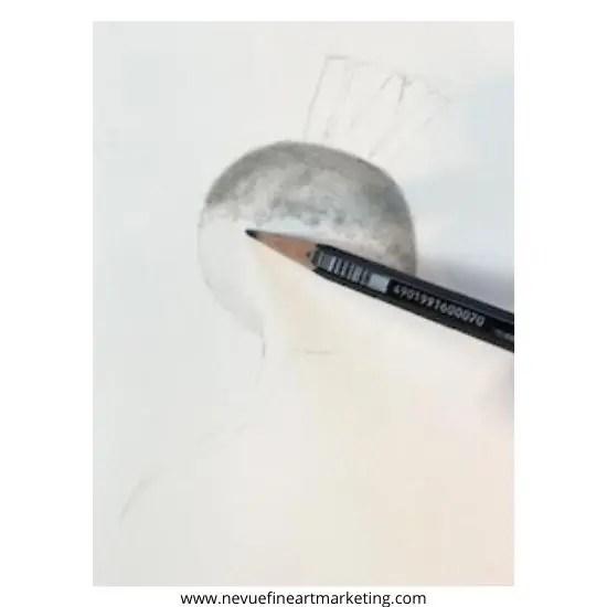add graphite to the white of the radish