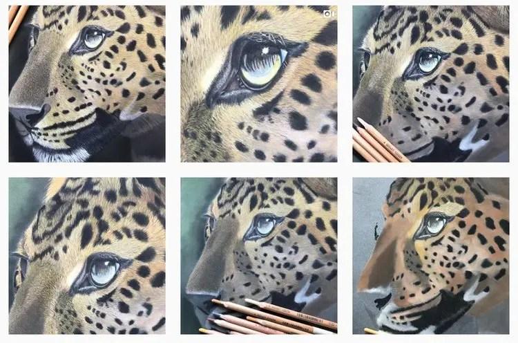 leopard pastel painting in progress