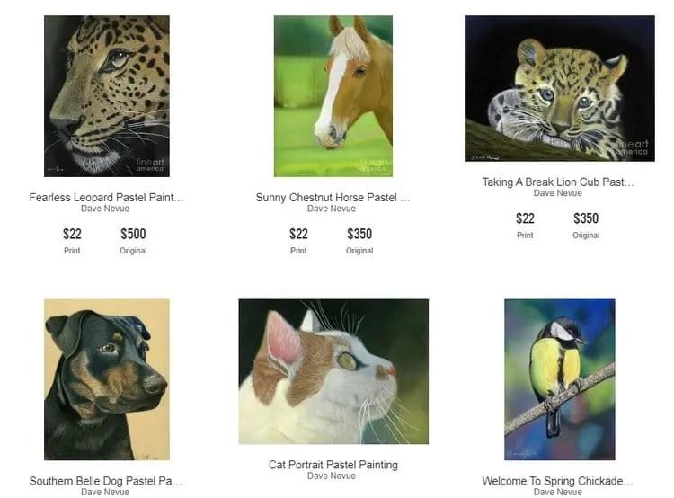 Fine Art America website widget
