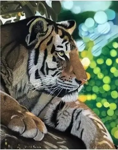 tiger pastel drawing