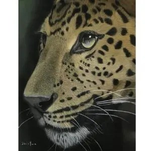 Fearless Leopard Giclee Prints