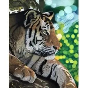 Siesta Tiger Giclee Prints